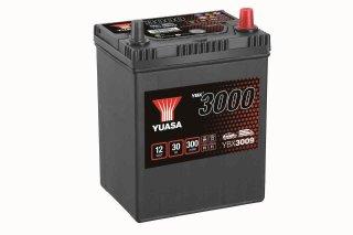 YBX3009